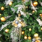 いつからいつまで?海外と違うクリスマスツリーの【3つのタイミング】