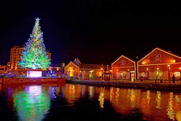 はこだてクリスマスファンタジーのイルミネーション