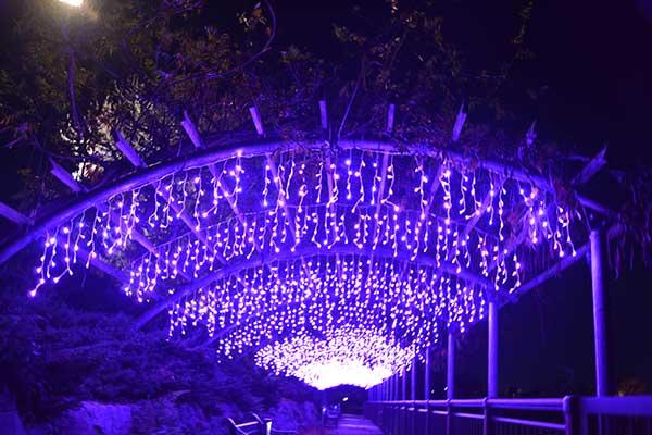 illumination-aichi_05