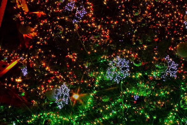 クリスマスデートで定番の夜景とイルミネーションがオススメ